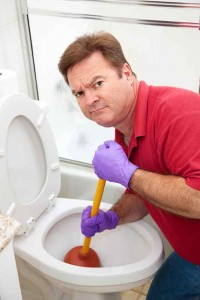 San Jose, CA Toilet-Repair-Services